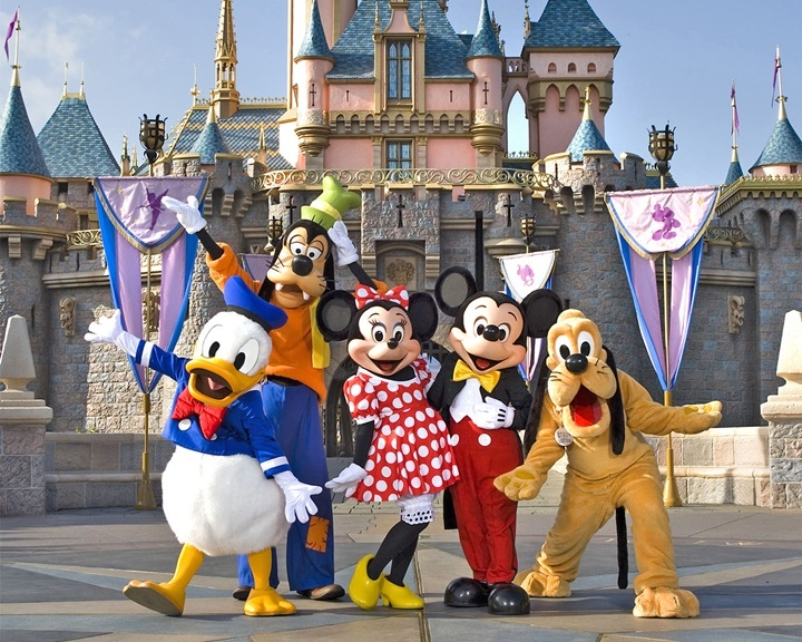 Private taxi services to Disneyland and other SoCal sights and attractions.